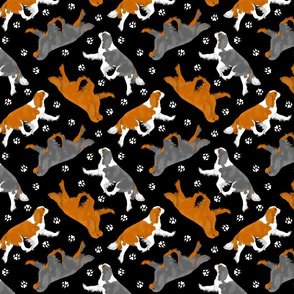 Trotting Cavalier King Charles Spaniels and paw prints - black