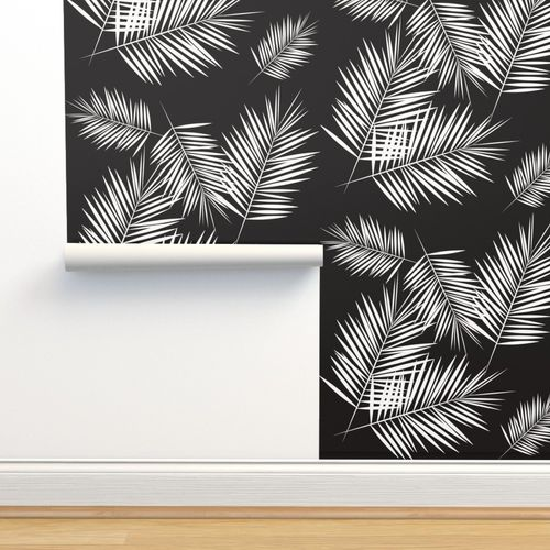 Wallpaper Palm Leaves Monochrome Black And White Palm Tree Fern Tropical Summer