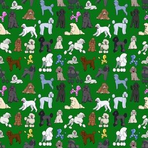 poodles_hunter_green