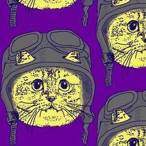 Moto Kitty on Purple