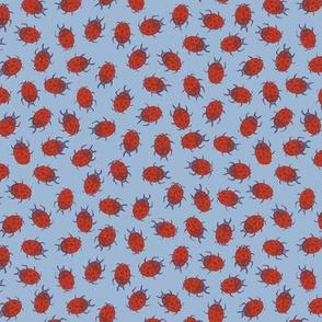 autumn ladybugs
