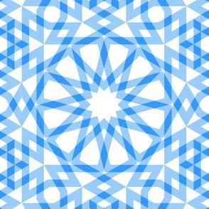 05593895 : SC64 arabian gingham : A