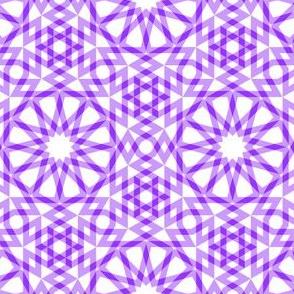 05593929 : SC64 arabic gingham : V