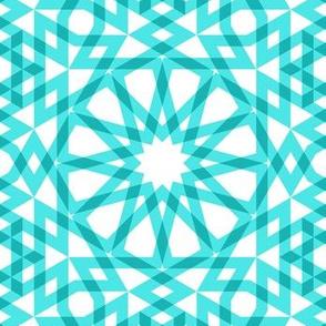 05594130 : SC64 arabic gingham : CT