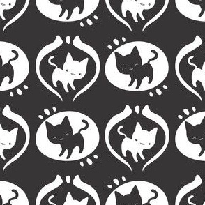 Black & White Kitties