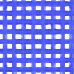 painterly_gingham 1 inch stripe