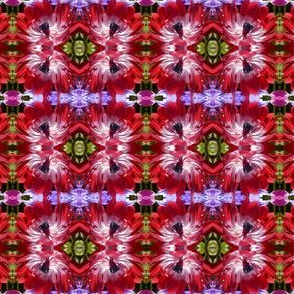 Red_Anemone_pattern