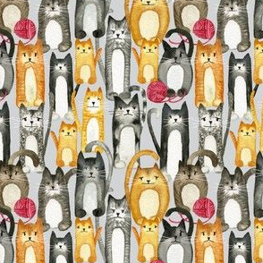 Cats and Wool