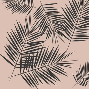 Palm leaves - palm tree tropical fern graphite on blush || by sunny afternoon