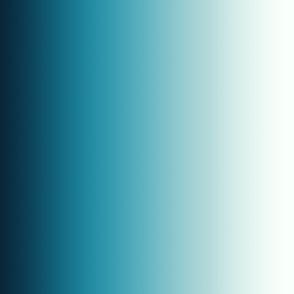 Aqua & Blue Ombre