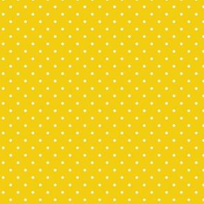 Polka dots for daisies