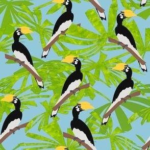 hornbills and palms