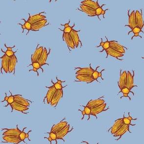 autumn beetles