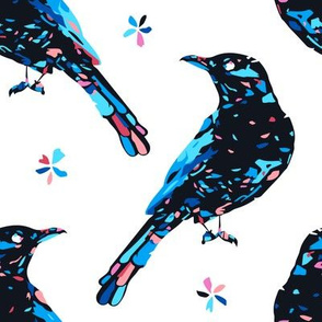 Patched black bird