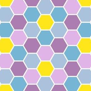 05614844 : R6Vi 54 : summer mosaic