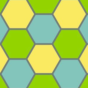 05614963 : R6V 54 : fancy hexes