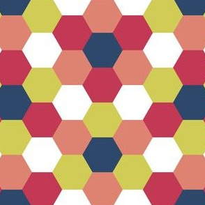 05614966 : R6V 54 : painted hexes
