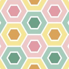 05615753 : R6V : springcolors