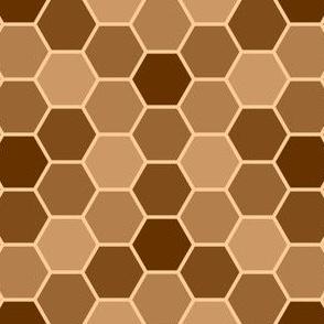05618962 : R6Vi 54 : FN wood wasp