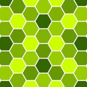 05619044 : R6Vi 54 : verdant green