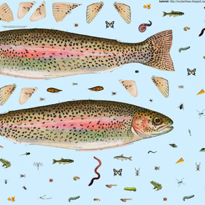 Cut and sew plush trout with its food