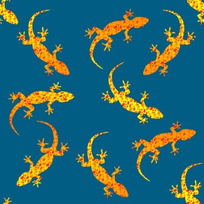Spotted geckos on blue