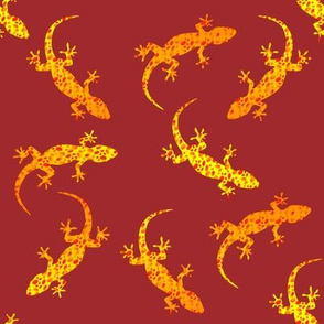 Spotted geckos on red