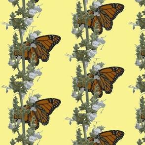butterflies 4 yellow background
