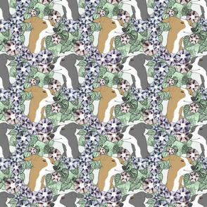 Floral Italian Greyhound portraits
