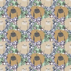 Floral Pekingese portraits