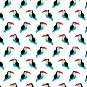 Colorful summer toucan birds tropical tucan pura vida paradise green red