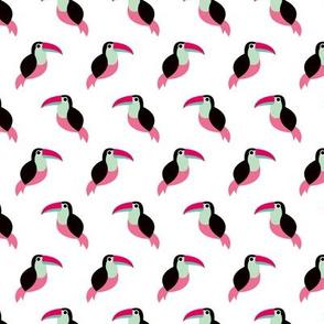 Colorful summer toucan birds tropical tucan pura vida paradise pink red