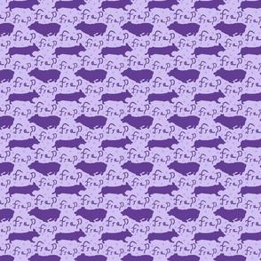Pembroke Welsh Corgi frap - small purple