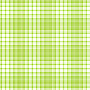 plaid lime green :: fruity fun bigger