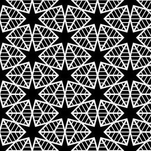 00563870 : R6E2r web of stars : white on black
