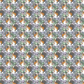 Small Floral Australian Shepherd portraits