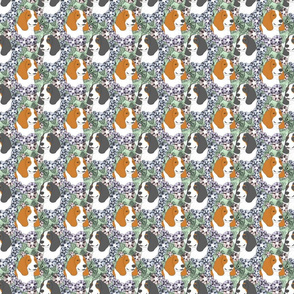 Small Floral Basset hound portraits
