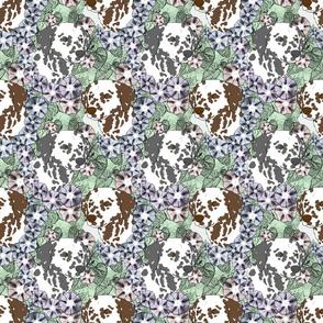 Floral Dalmatian portraits