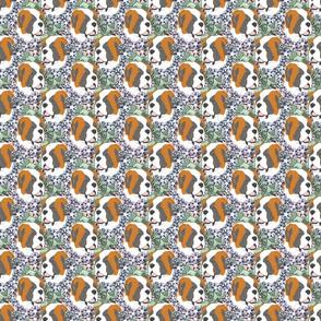 Floral Saint Bernard portraits - small
