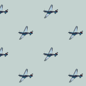 Flying Tiger  in the Sky in Gray and Blue
