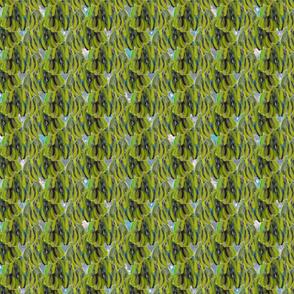 pear leaves