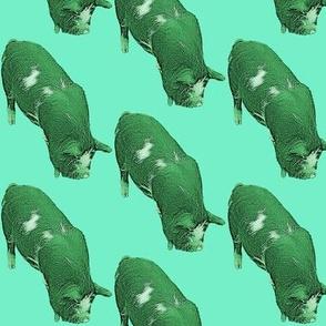 Green_piggy