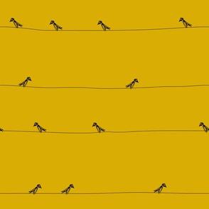 Birds black on ochre