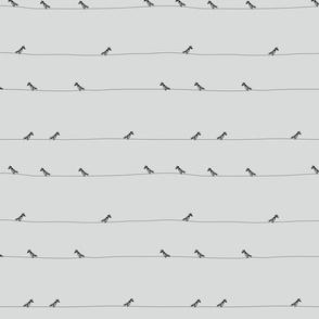 birds_black_ss16grey_240x240mm_basic-03
