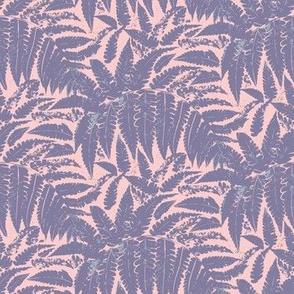 fern leaves on pink