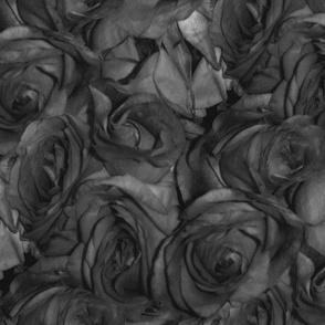 Last Rites ~ A Dozen Dozen Roses
