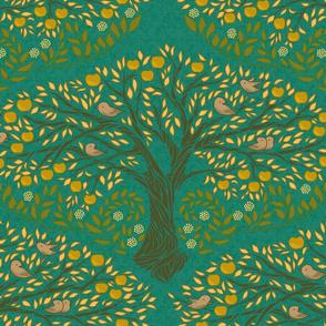 Apple Tree - Golden Delicious