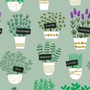 Herbs in pots (light)