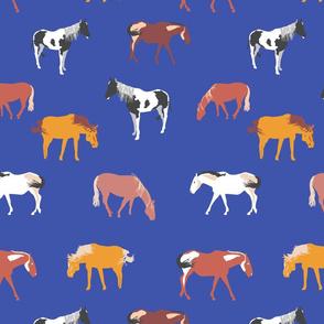 horses on blue