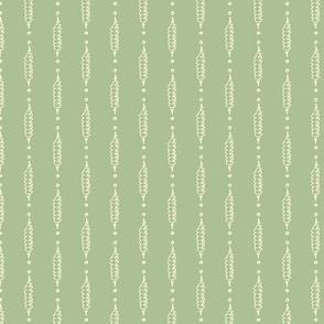 Tricones Stripe Lichen ©Julee Wood